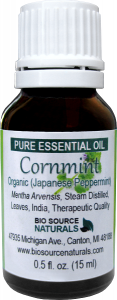 Cornmint Essential Oil Uses and Benefits