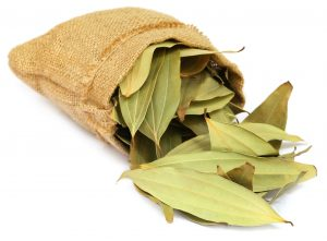 cassia essential oil uses and benefits
