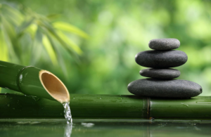 Edible Serenity Massage Oil Calms the Body, Mind and Spirit