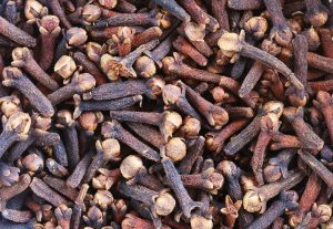 Clove Bud Essential Oil Uses and Benefits