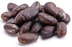 cocoa absolute oil uses and benefits