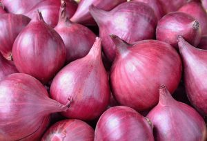 Onion Essential Oil Uses and Benefits