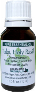 Holy Basil Essential Oil Uses and Benefits - Tulsi
