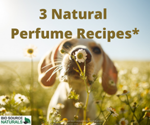 Natural Perfumes & Recipes with Essential Oils